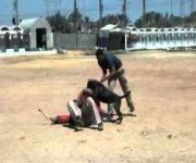 Dog Training-Eastwind Academy-Hera